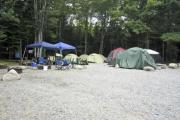 Photo: GR TENT NONELECT, BLACKWOODS CAMPGROUND