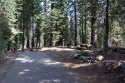 Photo: 010, AREA FINDLEY CAMPGROUND
