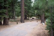 Photo: 025, AREA FALLEN LEAF CAMPGROUND