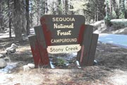 Photo: STONY CREEK SEQUOIA