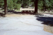 Photo: 025, AREA LOGGER CAMPGROUND