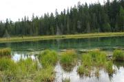 Photo: CLACKAMAS LAKE
