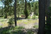 Photo: SILVER CREEK-TRUCKEE (CA)