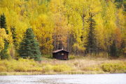 Photo: SWAN LAKE CABIN SEWARD