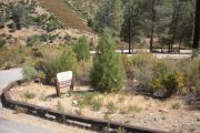 Photo: GRAY PINE GROUP CAMPGROUND