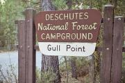 Photo: Gull Point Campground