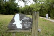 Photo: CEDAR POINT TIDELAND TRAIL