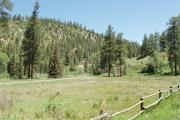 Photo: BLANCO RIVER CAMPGROUND (CO)