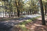 BURNS RUN WEST (OK) Campground