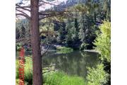 Photo: LAKE CAMPGROUND