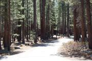 Photo: OLD SHADY REST CAMPGROUND