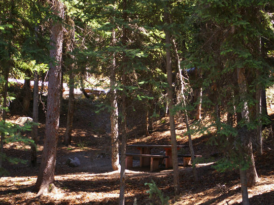 Top Elevation Plan : Camping at mill hollow ut