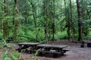 Photo: Bayview South Campground