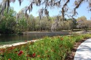 Photo: SALT SPRINGS RECREATION AREA