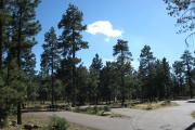 Photo: CROOK CAMPGROUND