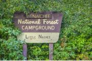 Photo: LITTLE NACHES