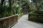 Photo: JUNIPER SPRINGS REC AREA