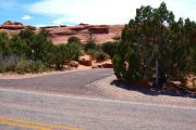Photo: 013, DEVILS GARDEN CAMPGROUND
