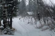 Photo: BEAR CREEK BUNKHOUSE
