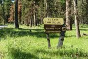 Photo: BIG LARCH CAMPGROUND