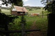 Photo: West Fork Cabin Back Yard