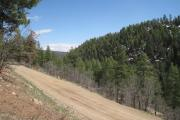 Photo: JUNCTION CREEK CAMPGROUND Road