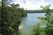 Photo: HOUSTON RECREATION AREA