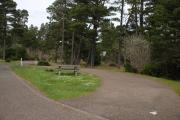Photo: BLUEBILL CAMPGROUND (OR)