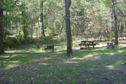 Photo: OAK BOTTOM CAMPGROUND