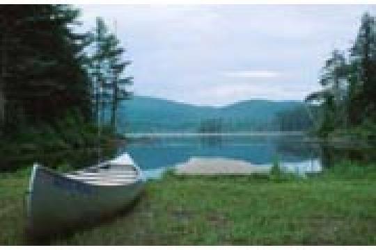 Camping At Buck Pond Campground Ny