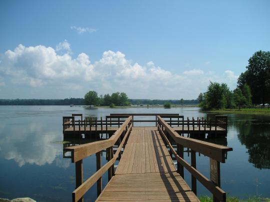 Mosquito Lake Dog Park Address
