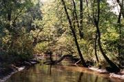 Photo: ROCHE-A-CRI STATE PARK