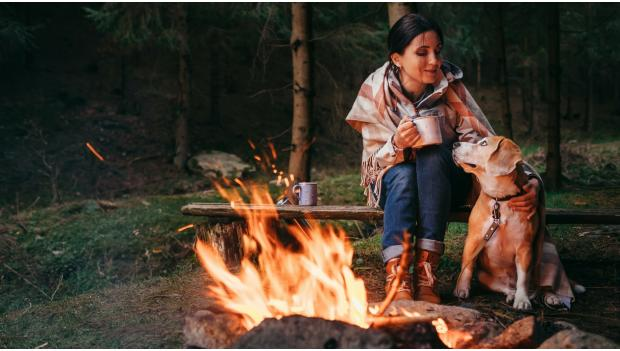Fall Camping With Dogs